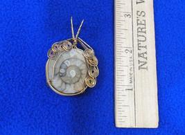 Unique Handmade Ammonite Fossil Shell Pendant  Set in Gold Tone Metal Jewelry - $21.77