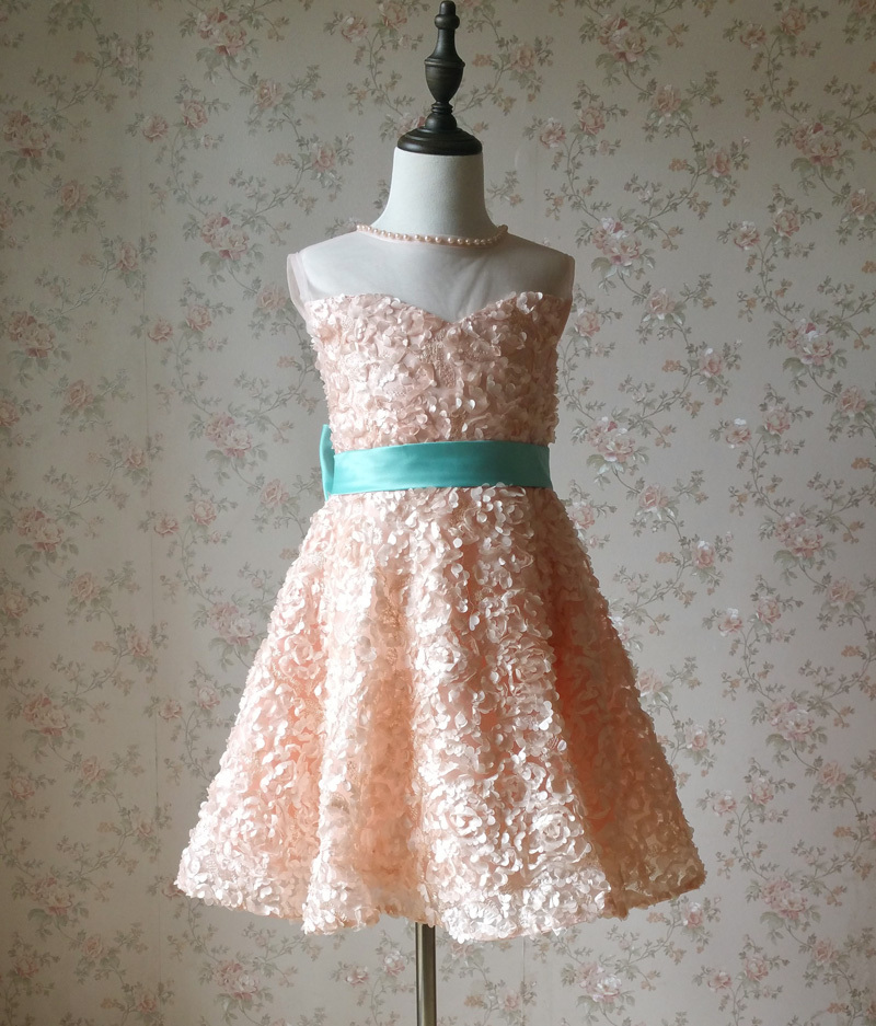 Girl Blush Lace Party Dress Blush Flower Embroidery Flower Girl Dresses 4-16 NWT