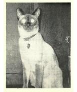 Vintage QSL Postcard   KHJ 9303   Nelsonville, Ohio  Homer & Elizabeth B... - $22.05