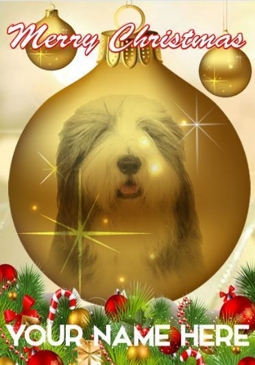 Primary image for Bearded Collie Dog Bauble Merry Christmas Personalised Greeting Card codeB111