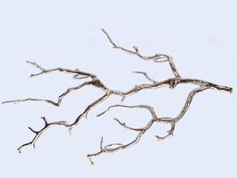 Rustic Tree Branch Candle Holder Wall Candle Holder Manzanita Tree Candle Holder image 3