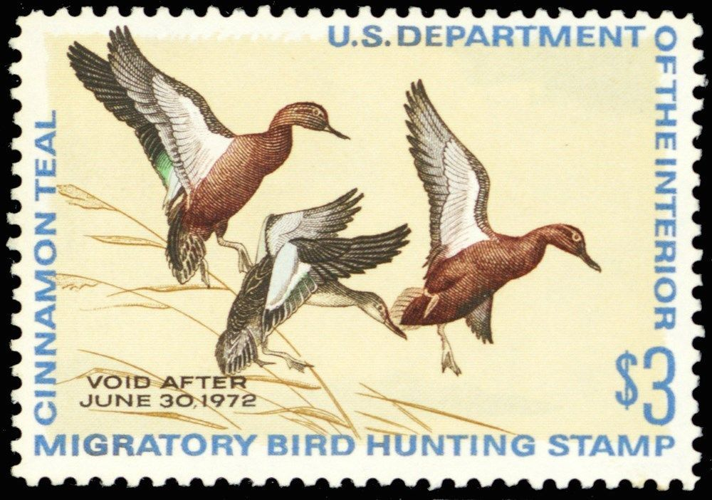 RW38, Mint VF NH DUCK Stamp - Well Centered Cat $40.00 - Stuart Katz