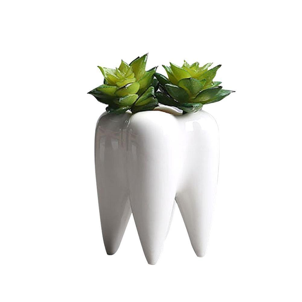 Succulent Flower Planter Pot Tooth Decor Flowerpot Cute Animal Garden Resin Home