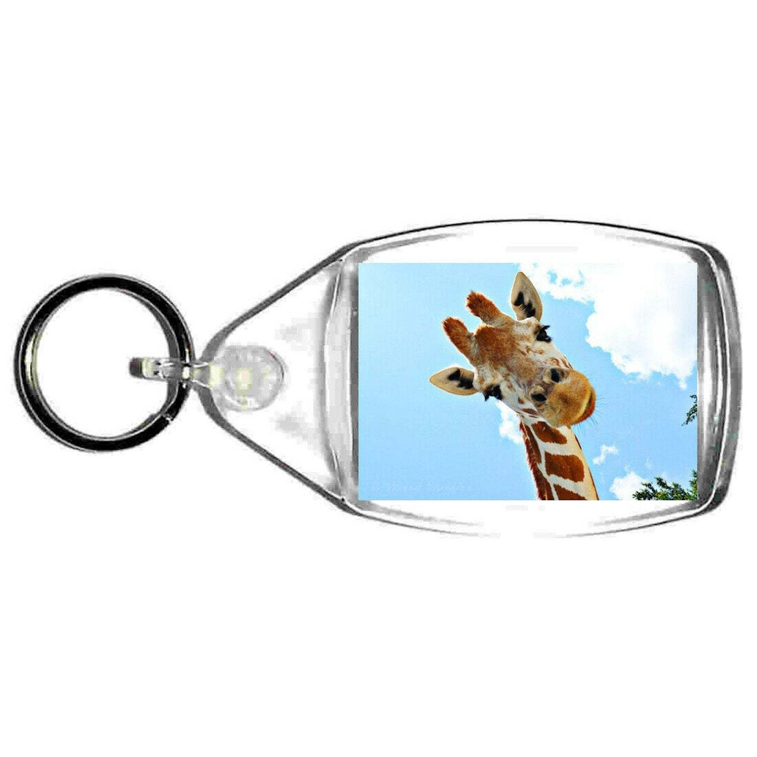 quizzicle giraffe keyring double sided ,giraffe looking keychain, bag clip. tag,