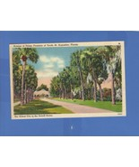 AVENUE OF PALMS FOUNTAIN OF YOUTH ST. AUGUSTINE FLORIDA TICHNOR LINEN PO... - $9.41