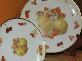 """Winterling Bavaria Plate 7.75"""" & Saucer Germany Apple Fruit Nut Gold Harvest - $12.59"""