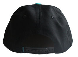 Staple World Renown Pigeon Brand Men's Aqua Snapback Hat NWT image 3