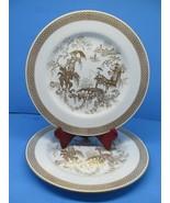 "Spode Spodes Garden 10 1/4"" Dinner plates Bundle of 2 Discontinued Pattern - $97.02"