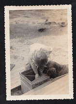Antique Vintage Photograph Adorable Little Baby & Puppy Dog Looking in Box - $5.35