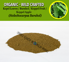 POWDER Kepel Leaves Burahol Keppel Fruit Keppel Apple Stelechocarpus Bur... - $7.85+
