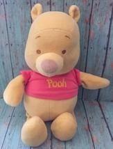 Winnie The Pooh Lovey Chimes Jingles Bell Plush Stuffed Animal Teddy Bea... - $44.54