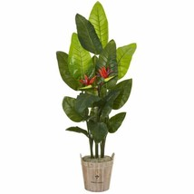 Multicolor 6? Bird of Paradise Artificial Plant in Farmhouse Planter (Real Touch - $315.94