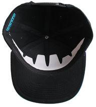 Staple World Renown Pigeon Brand Men's Aqua Snapback Hat NWT image 5