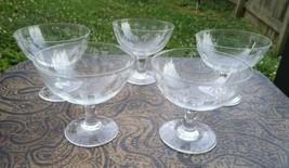 5 NORITAKE SASAKI CRYSTAL ETCHED BAMBOO LOW SHERBET CHAMPAGNE GLASSES 3-... - $11.90