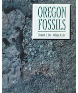 Oregon Fossils ~ Rock Hounding - $29.95