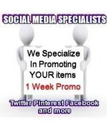 Social Media Specialists 7 Days Twitter + Plus Media Package - €7,96 EUR