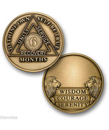 AA ALCOHOLICS ANONYMOUS 6 MONTH RECOVERY SOBRIETY ENGRAVABLE CHALLENGE COIN - €13,78 EUR