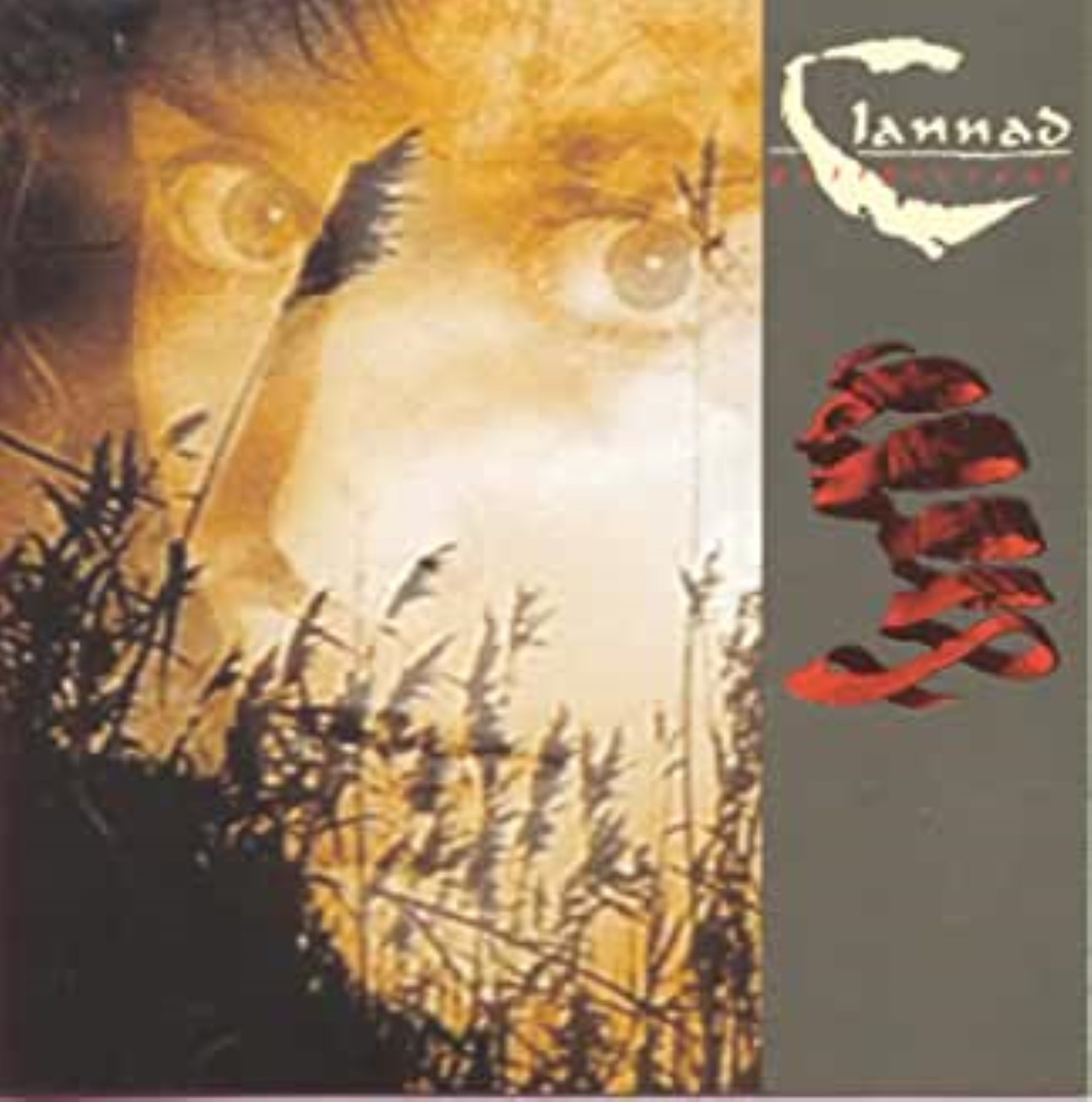Past Present by Clannad Cd