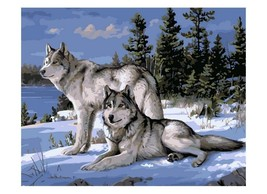 Paint By Numbers Kit Peaceful Wolves 40CMx50CM Canvas - $12.38