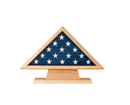 US MEDAL MEMORIAL FLAG CASE AND PEDESTAL CASE - $417.99