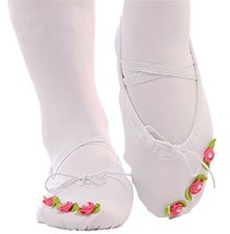 Dance Class Ballet Shoes/Canvas Dance Shoes for Pretty Girl (19CM Length)-White image 3