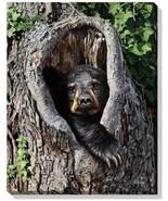 Cubby Hole - Black Bear Wrapped Canvas by Jon Ren - $64.95