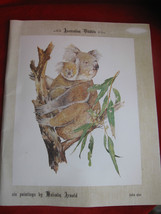 Australian Wildlife Set 6 Colored Photograph of Original by Malcome Arnold  - $7.66
