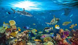 Under Water Sea Scape Aqua Wall Art Mural Self Adhesive Vinyl Wallpaper V3 - $47.93+