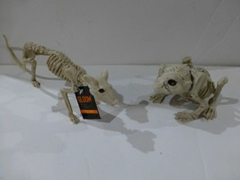 Frog and Rat Small Skeleton Plastic Halloween Props New  - €15,05 EUR