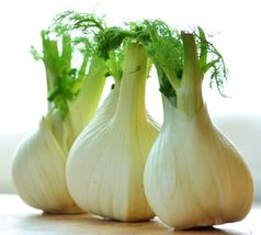 SHIP From US, 1/8 oz 900 Seeds Florence Fennel, DIY Herb Seeds ZJ01 - $21.99