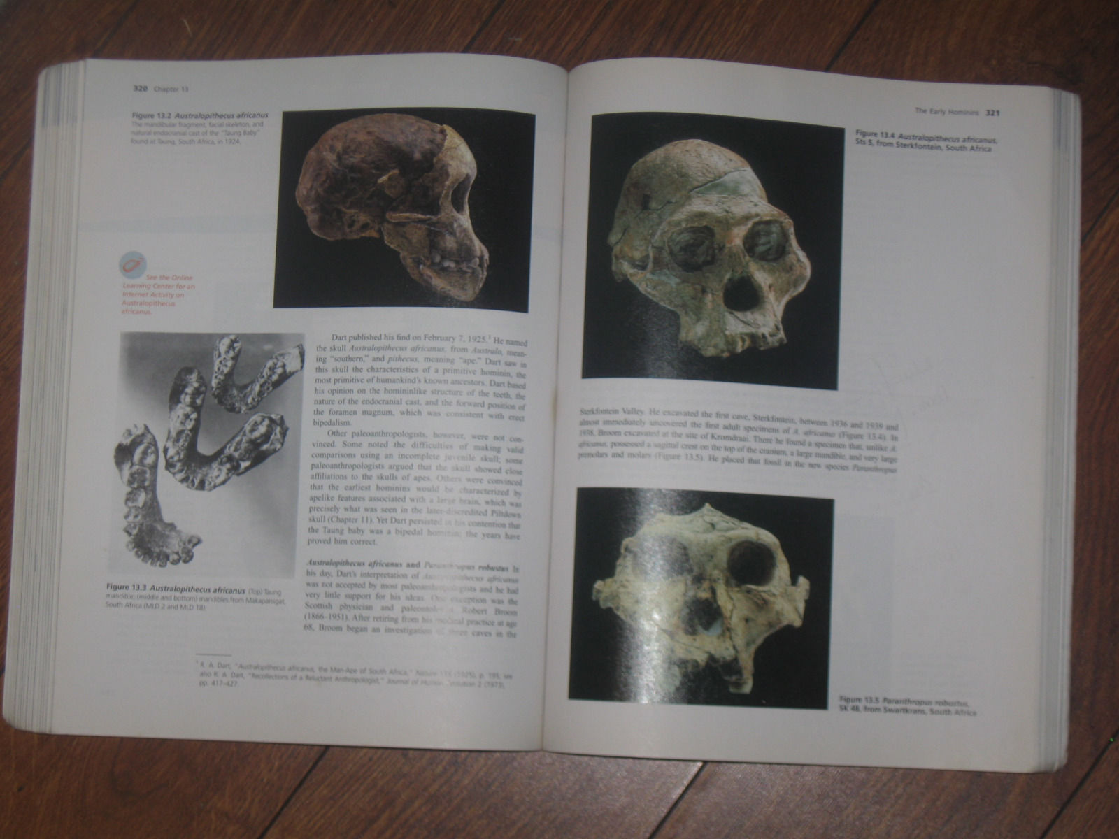PHYSICAL ANTHROPOLOGY 9th Ed by Philip Stein and Bruce Rowe IBSN 10: 0073205753