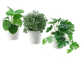 "Ikea Fejka 3 Artificial Potted Plants with Pot, Indoor/ Outdoor 2 ¼ "" New - $16.17"