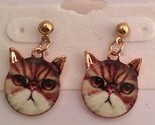 "Lucite Covered Pierced 1"" Pink Gold Tabby Cat Earrings"