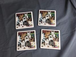 Set of 4 Tile Coasters w/ Cork Anti-Slip Backing - Seven Colored Kittens... - $5.95
