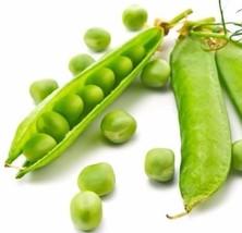 Green Arrow snow pea 50 seeds Pisum sativum * Heirloom * Non GMO * CombSH J46 - $14.49