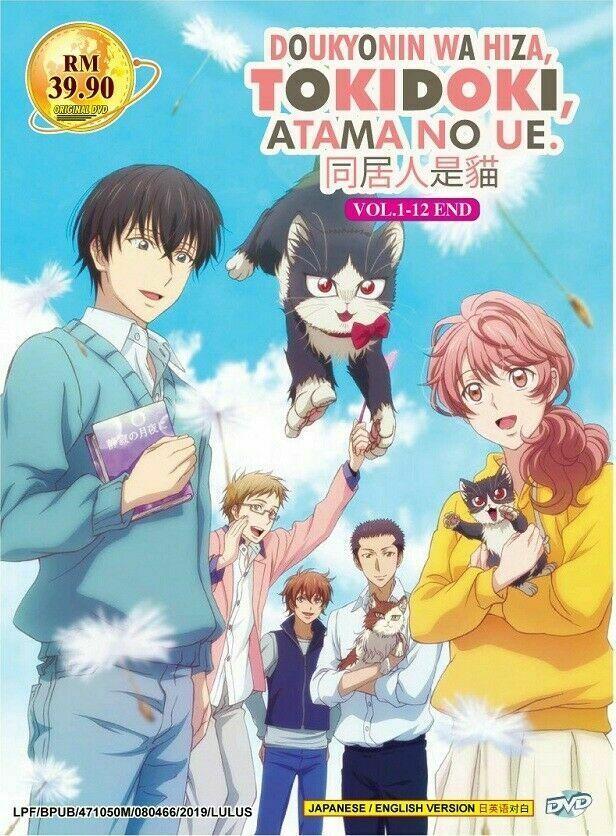 Doukyonin Wa Hiza TOKIDOKI, Atama No UE TV Series 1-12 English DUB Ship From USA