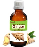 Ginger Pure Natural Essential Oil 5ml- 250ml Zingiberaceae officinale by... - $10.66+