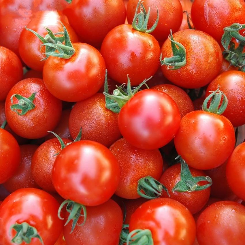 30 Yellow Mini Tomato Seeds Lycopersicon Esculentum Organic Vegetables