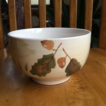 Royal Norfolk Autumn Fall Acorn Oak Leaf Cereal Bowl Replacement - $9.90