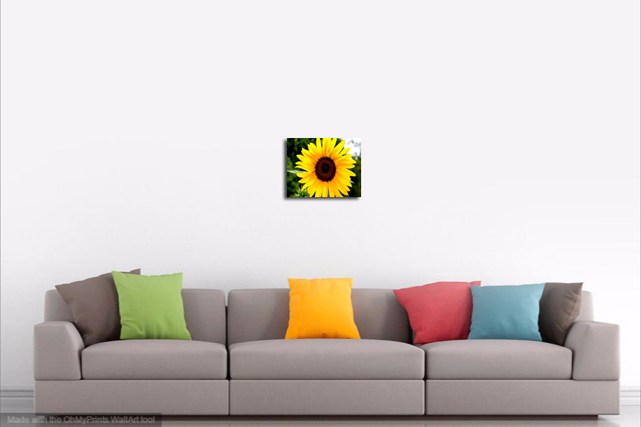 Wall Decor Canvas or Matted Print - Sunflower