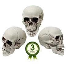 Skull Decorations – Bag Of 3 Plastic 5 Inch Skulls For Halloween Decor - €17,31 EUR