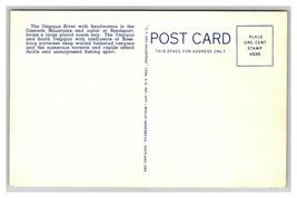 VINTAGE Curteich Linen Postcard - Umpqua River Pacific Highway Oregon Un... - $8.88
