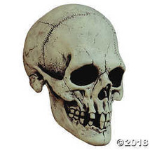 Halloween Nightowl Skull White Mask - £44.59 GBP