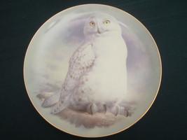 SNOWY OWL collector plate RAYMOND WATSON 1st Edition OWLS Franklin Mint - $28.98