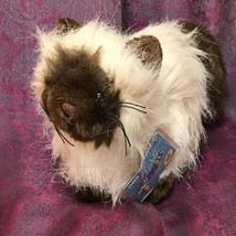 "GANZ Webkinz 9 "" Long-Hair Plush Himalayan Cat  HM 165n SEALED CODE - $13.85"