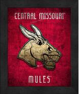 "Central Missouri Mules ""Retro College Logo Map"" 13x16 Framed Print  - $39.95"