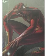 The New Flash DC Comics 1986 Promotional Poster - $24.75