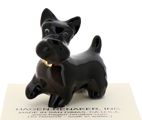 Scottish terrier1
