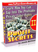 Profit Secrets II - ebook - $1.79