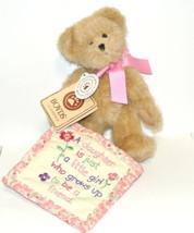Boyds Bears Thinkin' of Ya Series Darlin' Bear Plush 903173 blanket - $19.65